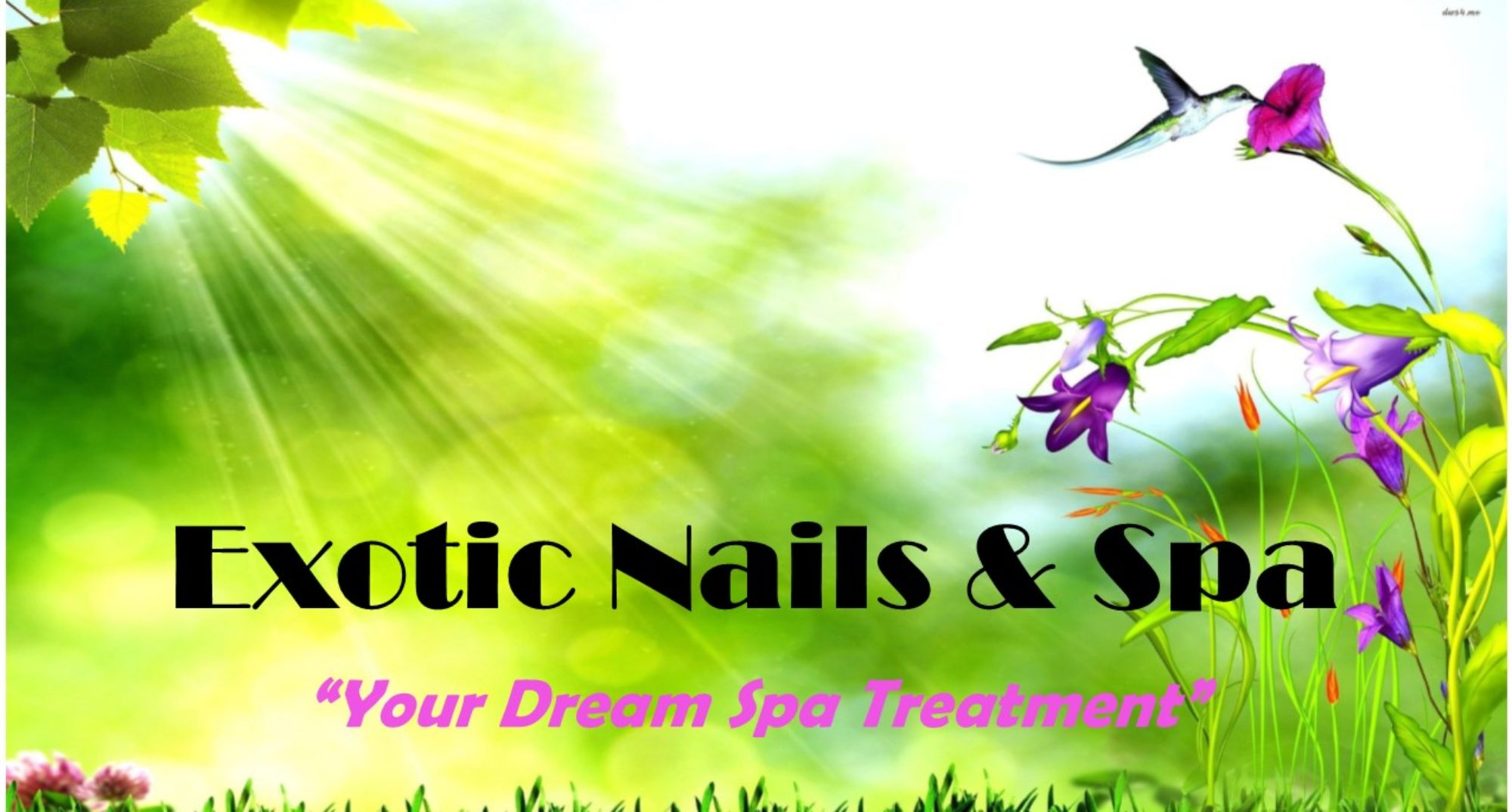 Exotic Nails & Spa – Your Dream Spa Treatment